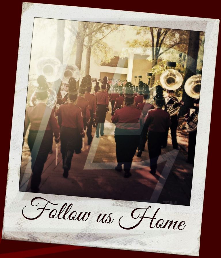 Follow us Home